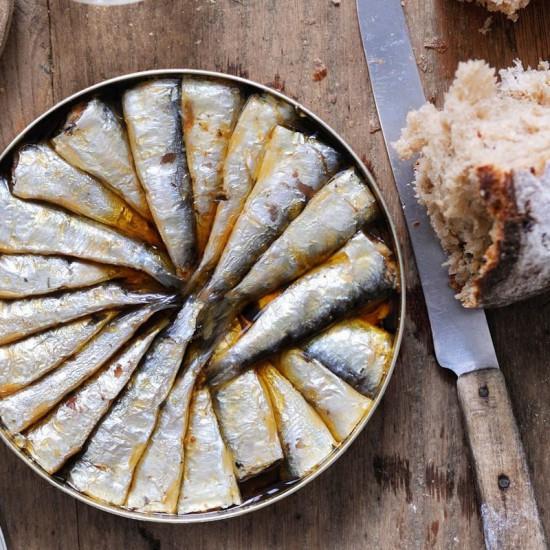 Petites sardines de Galice