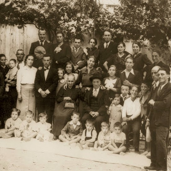 Famille Roi producteurs d'huile d'olive en Ligurie