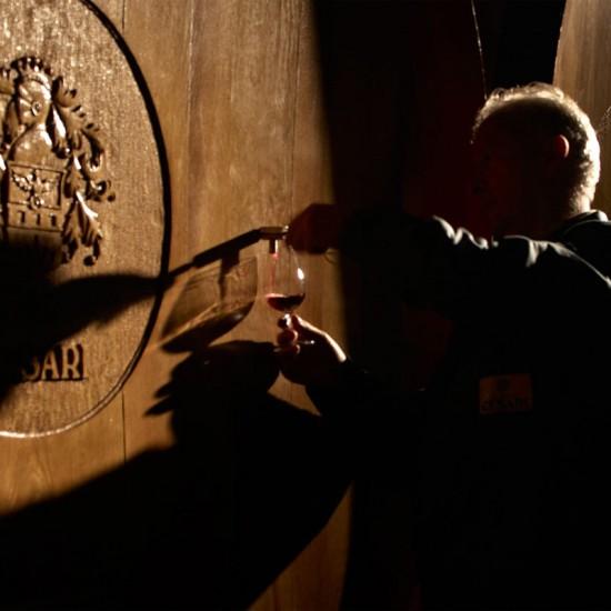 Cesari grands vins italiens