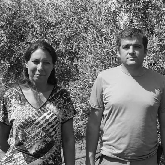 Producteur huile d'olive Haute Provence