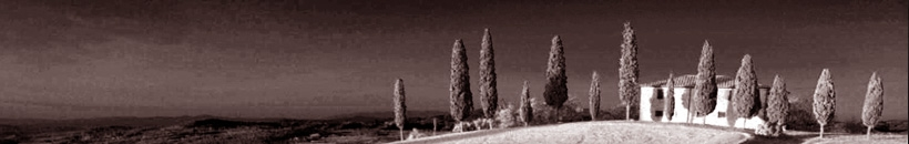 Des poivres magiques, des épices envoutantes, découvrez une sélection unique de petits riens qui font tout le charme de la cuisine méditerranéenne : piment d'Espelette, fleur de sel de Trapani, cçapres à tige, pimenton de la vera, baies de Timur...
